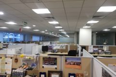 LED_Lights_Exxon_Mobil_Bangalore_06