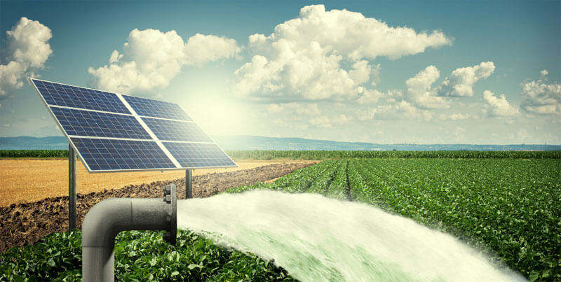 solar water pumping solutions by Apollo Power Systems